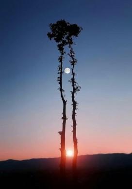 خورشید و ماه در یک خط موازی