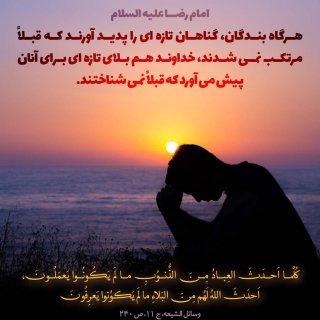 قرار ما حرم توست یا امام رضا(ع)