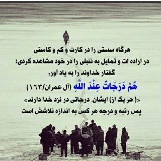 شما باید چند روزى قرآن نخوانید