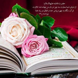 آیا قرآن روی طاقچه منزلتان خاک میخورد